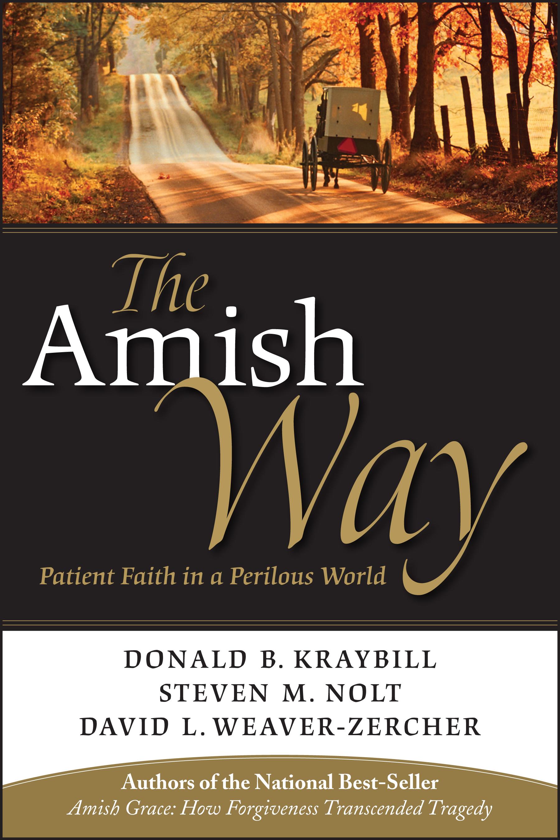 The amish ways