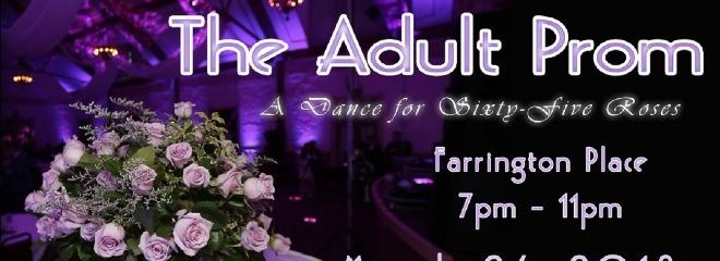 Adult%20prom%20banner%202018%20resize