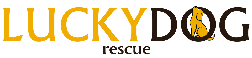 Lucky dog rescue logo