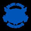 Blueowl logo