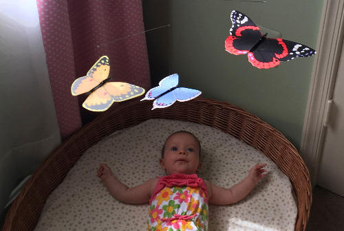 Infantbutterflymobile