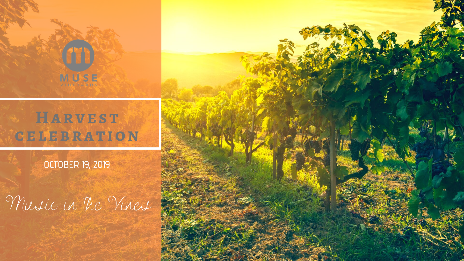 Harvest celebration 2019 (1)