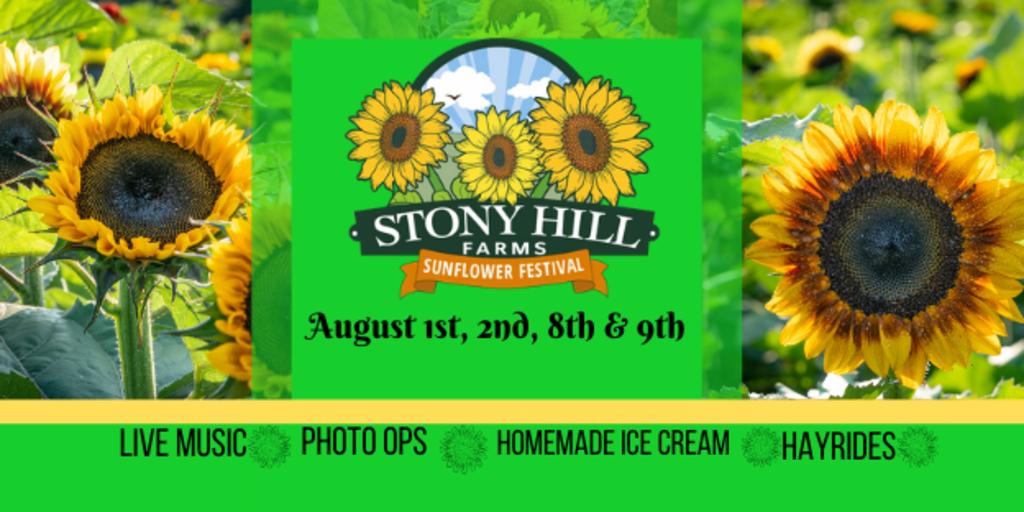2020 sunflower festival