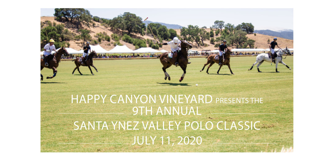 Polo website banner 2020