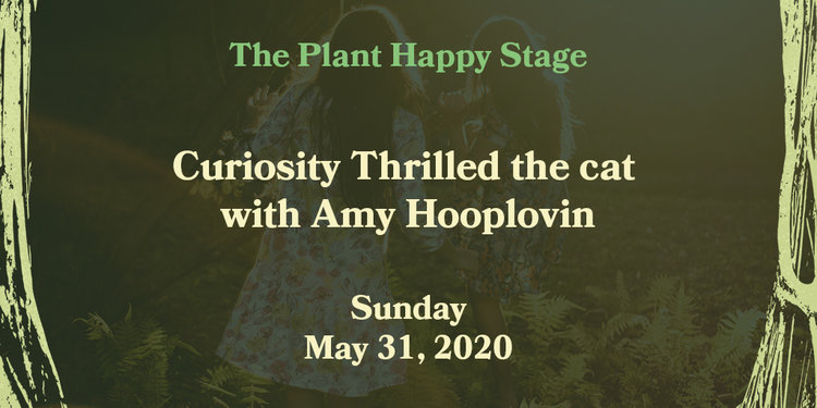 Wild world banner curiosity thrilled the cat with amy hooplovin