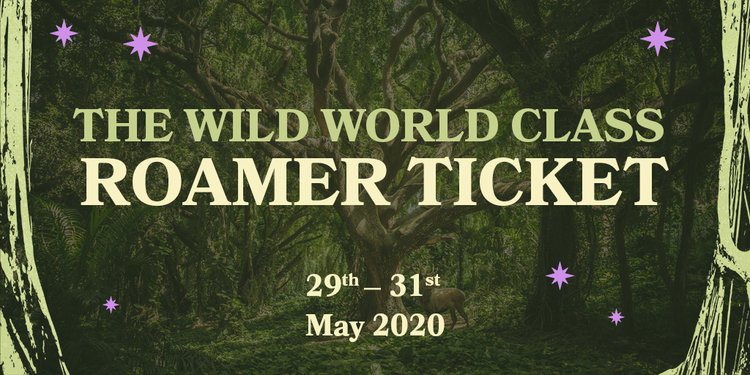 Wild world banner the wild world class roamer
