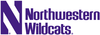 7300 northwestern wildcats wordmark 1981