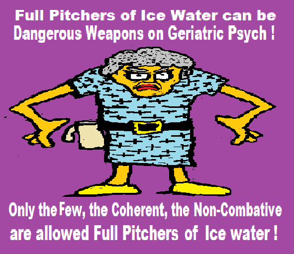979915443_icewater.png.f6847790882dde5067e4ca5cfe83bd2f.png