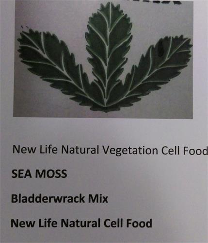 SEA MOSS BLADDERWRACK MIX NEW LIFE NATURAL CELL FOOD NEW