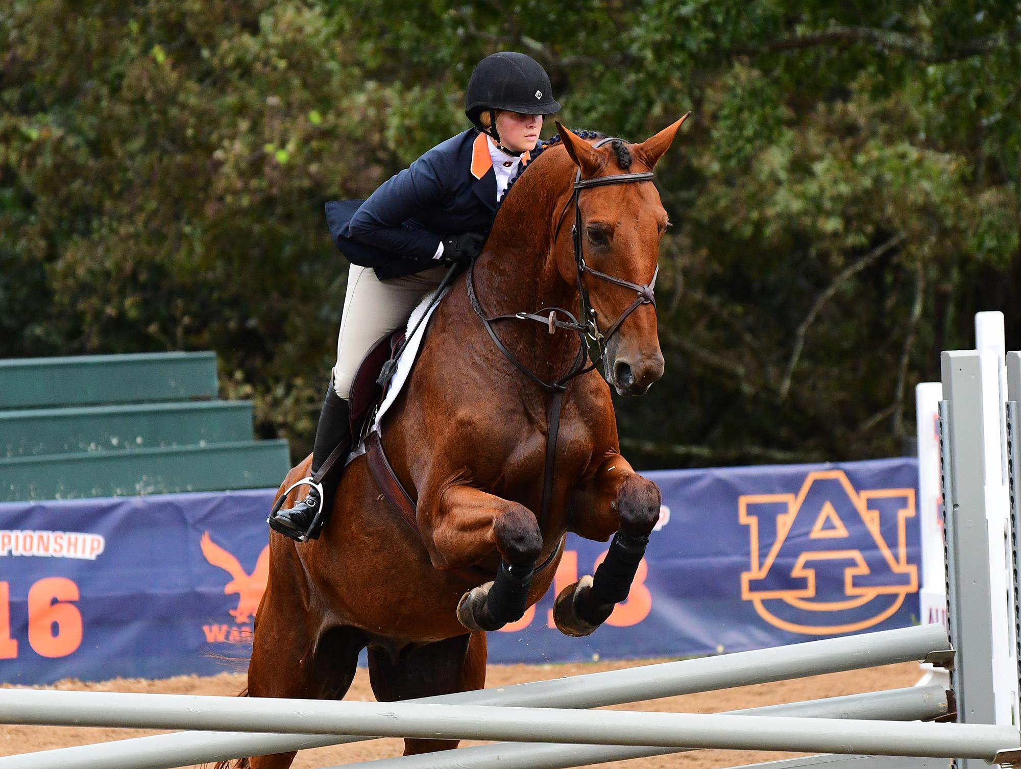 Boyle Alexander Earn Sec Riders Of The Month Auburn