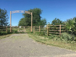 Live Auction: Agricultural Land In Mission, TX
