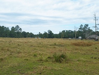 CANCELLED – Online Auction: Agricultural Land (Rural Lot 12) In Sulphur, LA