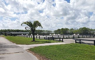 Live Auction: Land With Dwellings (15680 & 15740 46th Lane S.) In Wellington, FL
