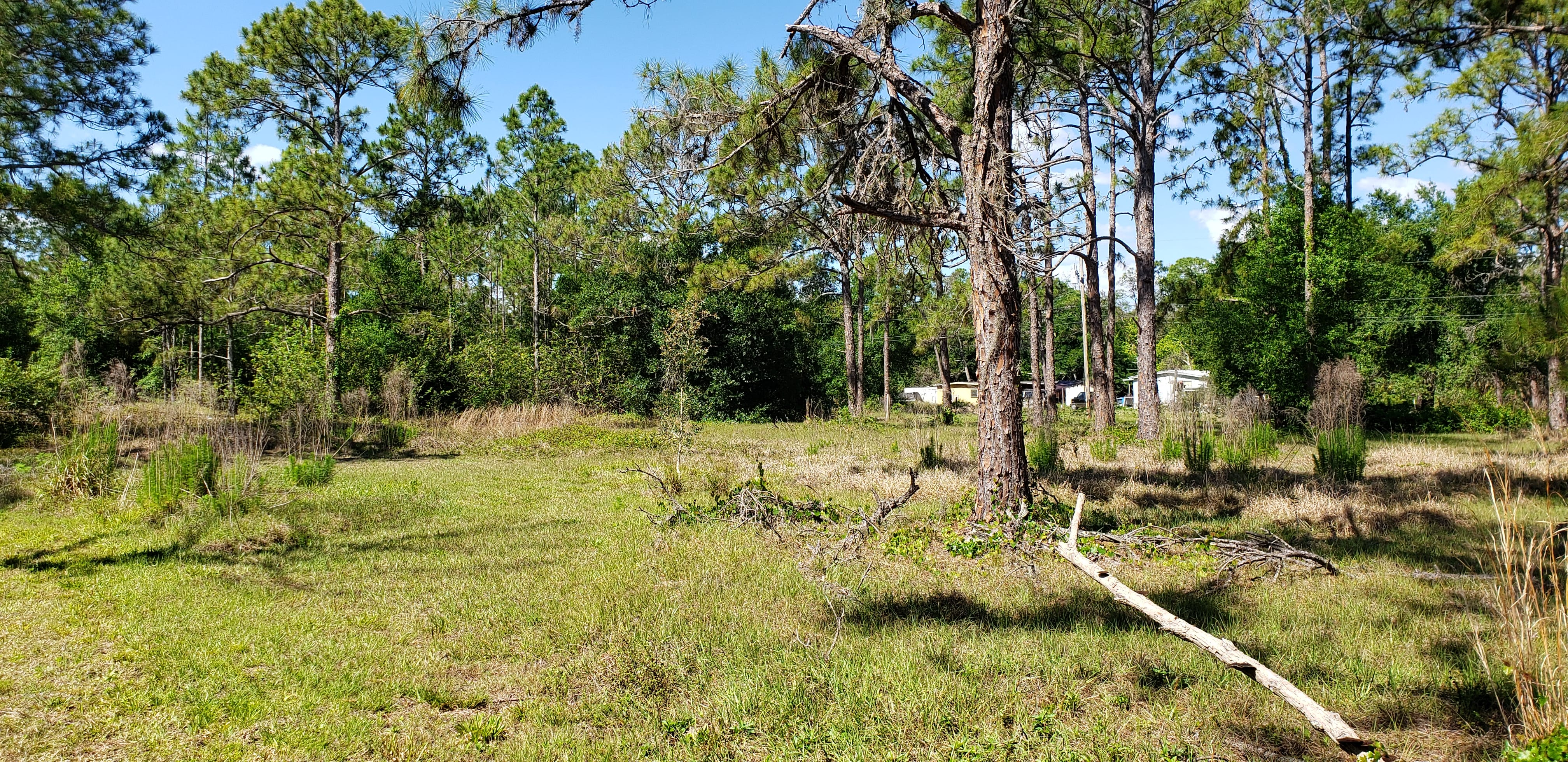 Online Auction: Residential Land (10721 Pioneer Road) In North Fort Myers, FL