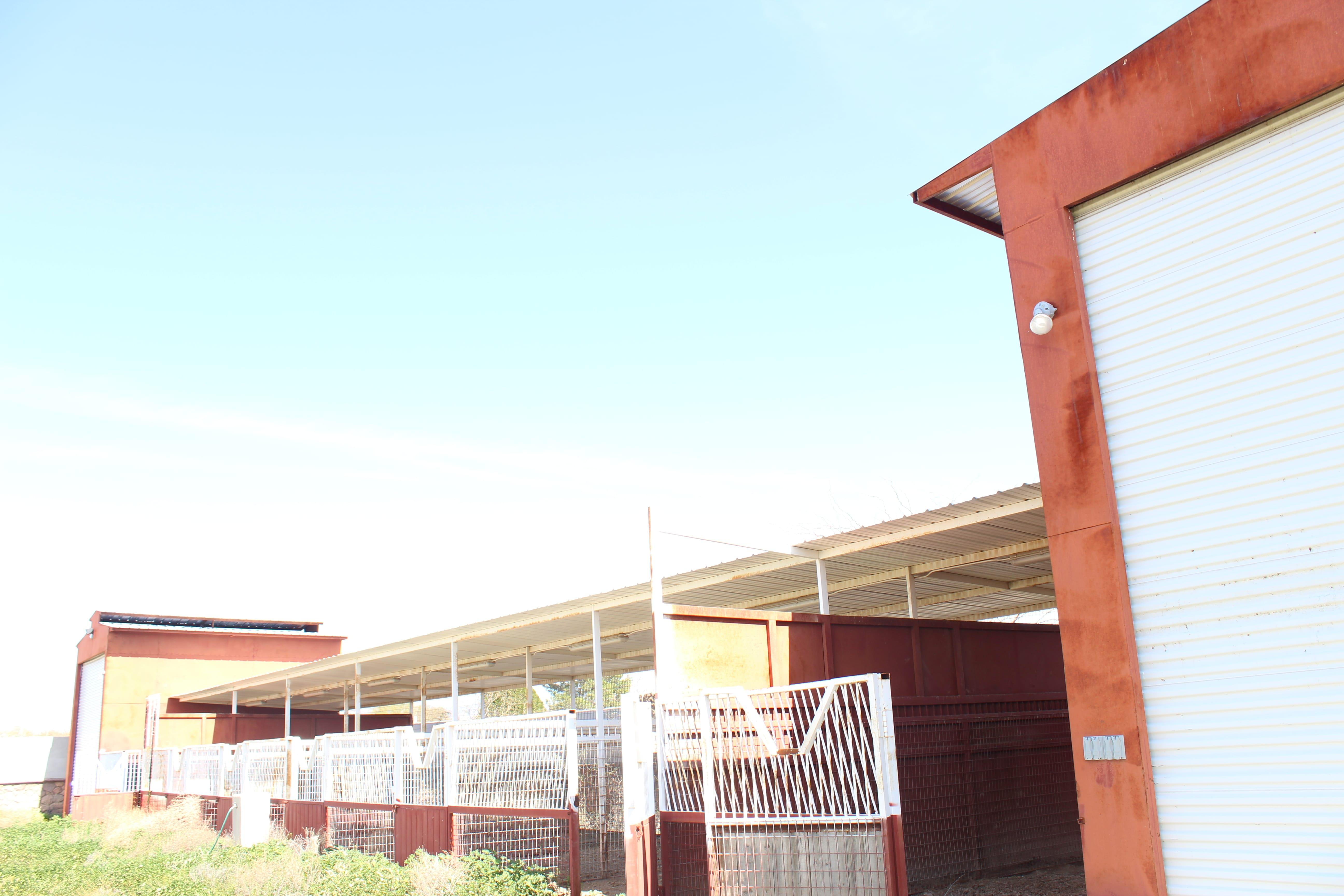 7045 S Sandpiper Ave, Tucson, AZ (5)
