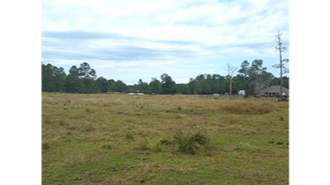 Online Auction: Agricultural Land 4.4 Acre Lot 12 On Con Dios Lane, Sulphur, LA