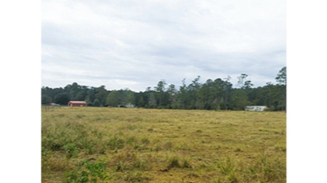 Online Auction: Agricultural Land 4.97 Acre Lot 14 On Con Dios Lane, Sulphur, LA