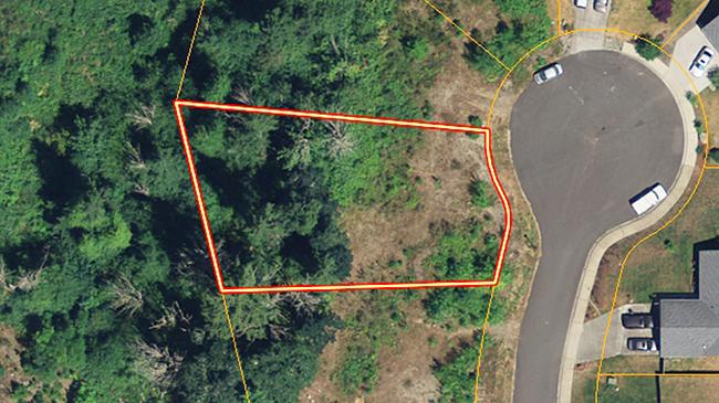Online Auction: Vacant Land 910 Cody Street SE – Lot 85, Rainier, WA