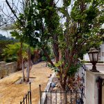 Unit-A-2230-Lake-View-Ave-Los-Angeles-CA-90039-07022021_095956