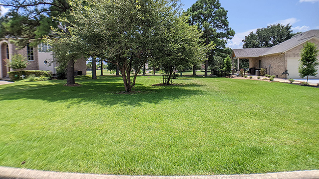 Online Auction: Vacant Land 53 South Wind Dr, Montgomery, TX