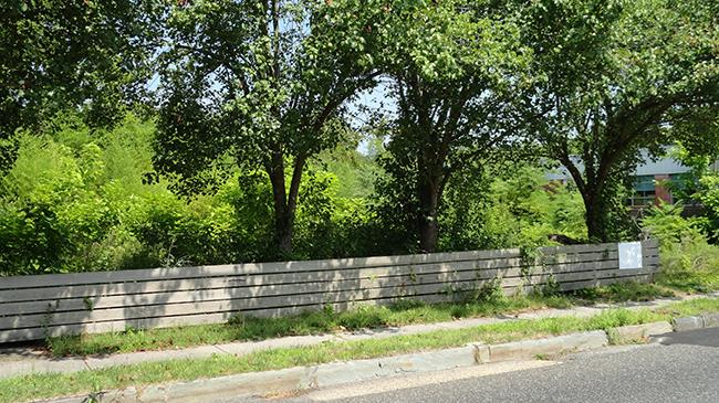Online Auction: Vacant Land 1117-1119 Shore Road, Linwood, NJ