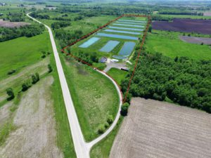 Willow Creek Aquaculture Fish Farm In Berlin, WI