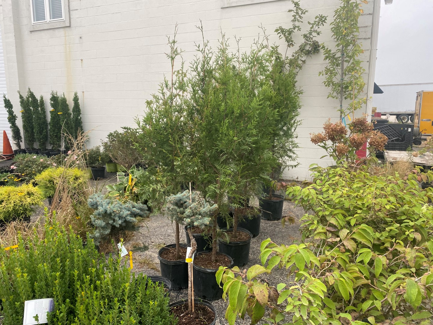 Fall Landscaping Online Auction In Indianapolis, IN