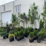 May Plant & Landscaping Online Auction In Indianapolis, IN