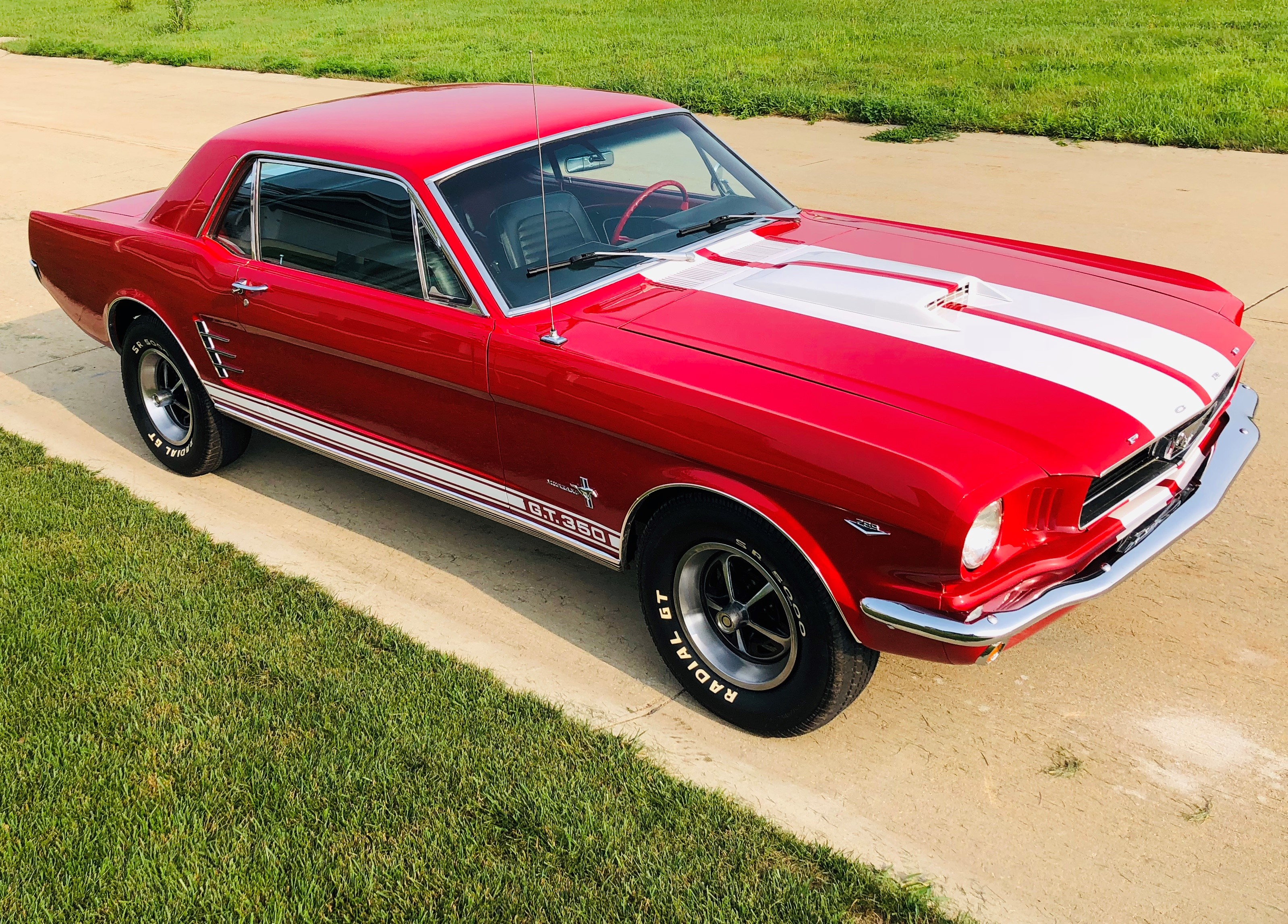 1966 Ford Mustang Coupe (GT350 Tribute)