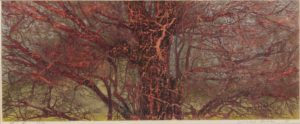 """Lot #2001 Joichi Hoshi (1921-1979 Japanese) """"Trunk and Branches,"""" 1973, woodblock on paper, price realized: $3,437"""