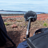 Preview for A Beginner's Guide to Field Recording, Pt 1