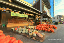Downtown Austin Whole Foods Market Pumpkin Patch