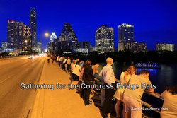 Downtown Austin Congress Bridge Bats