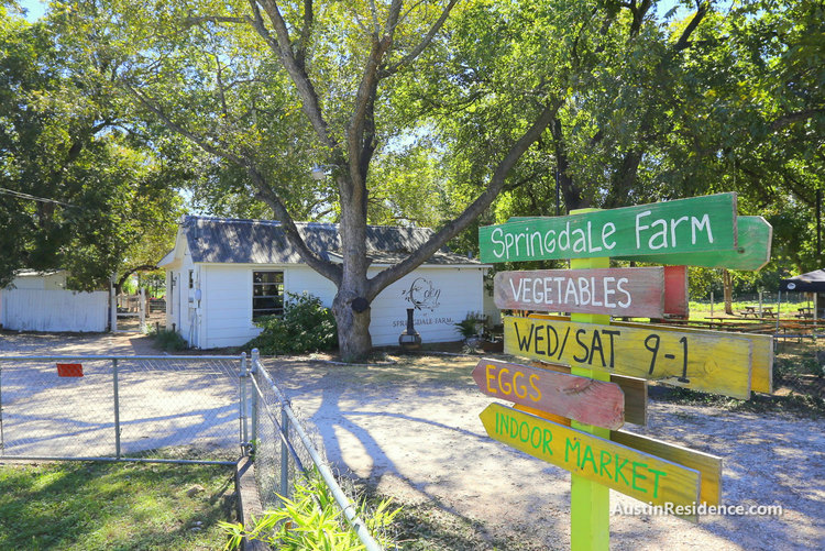East Austin Springdale Farm