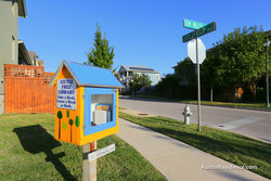 Mueller Little Free Library