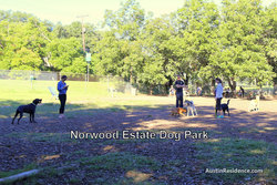 South Central Austin Norwood Estate Dog Park
