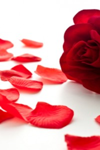 Love Verses