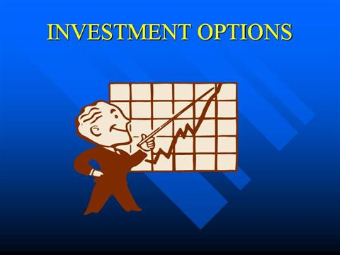 Choice of investment options