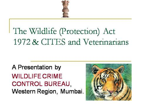 wildlife protection act in pakistan