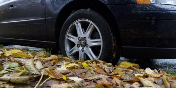 Vinterdæk og efterårs blade gør vejen glat.