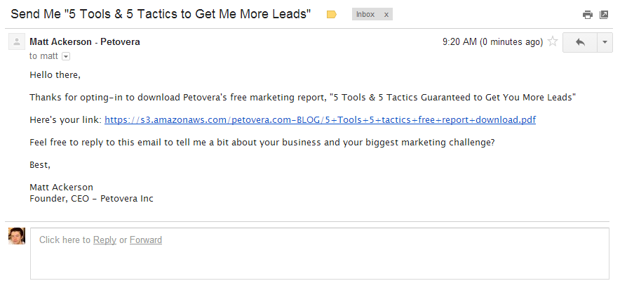 email-auto-response-free-report-link