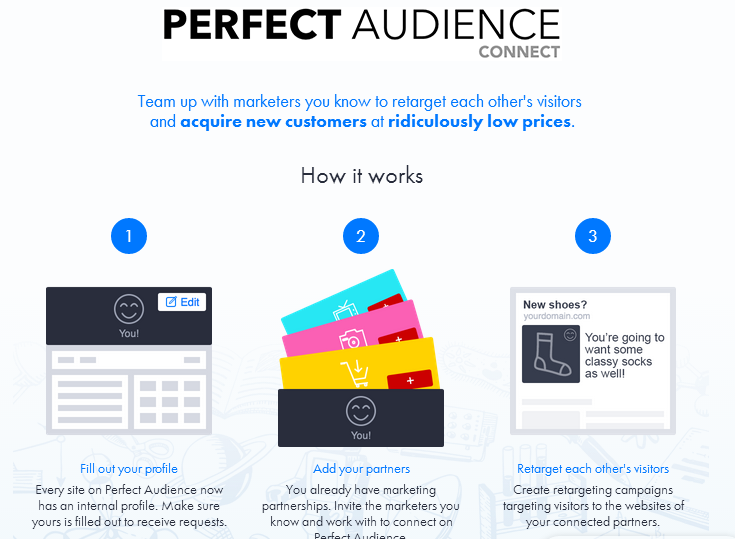 perfect-audience-connect
