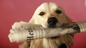 He won't be so loyal once he reads that paper. Image via turner.com