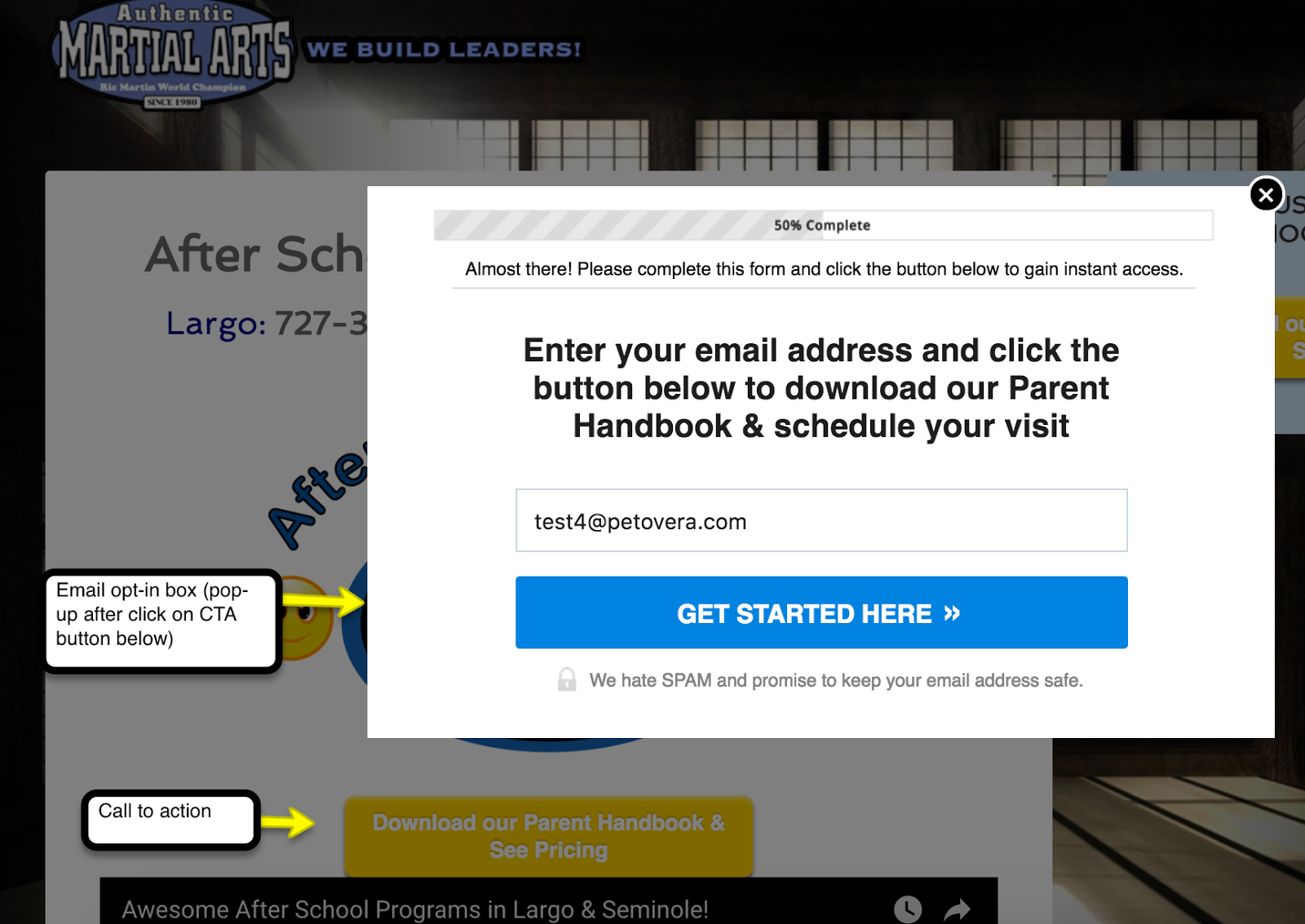 email optin popup example.png