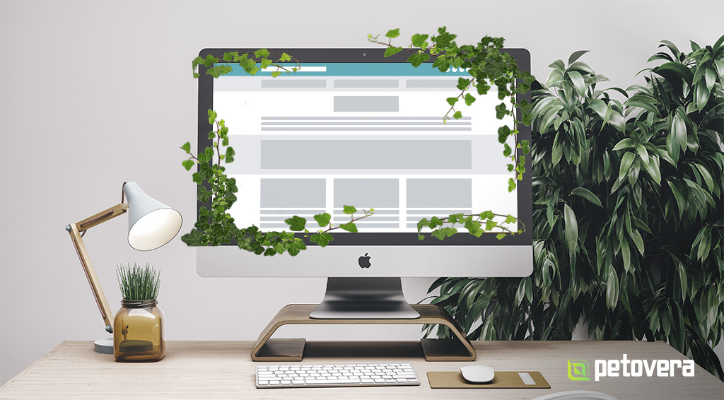 header_evergreen_generic.jpg