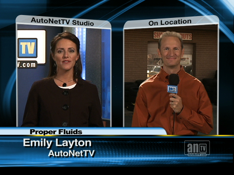Loyola Automotive Advice on What to Pour into Your Vehicle