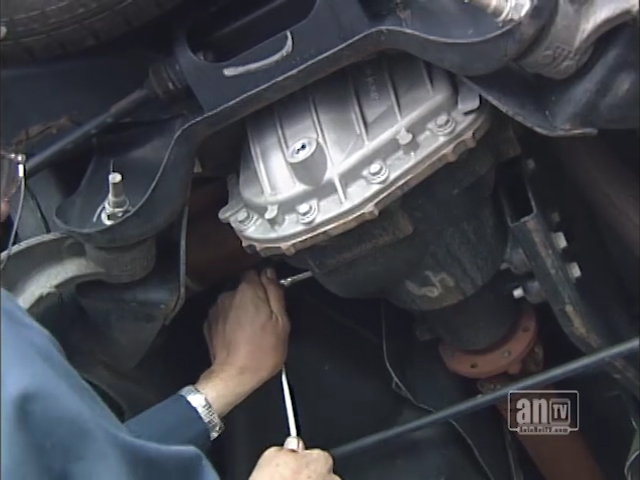 Vive la Differential at Hi-Line Autocare in Orange