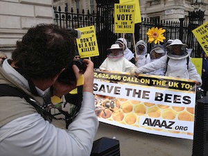 March of beekeepers