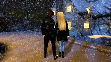avakin life winter couple
