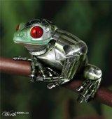 RobotFrog21